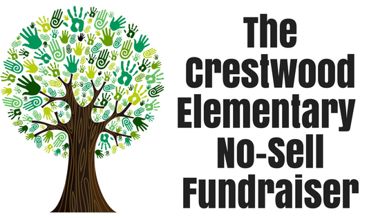 blog title no-sell fundraiser