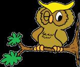 Crestwood Owl